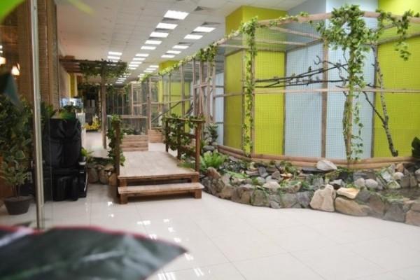 Открытие нового филиала сети контактных зоопарков «Зверюшки»